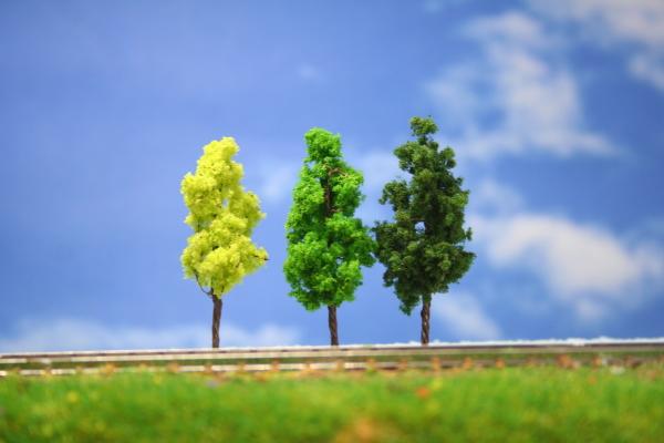 建築模型植栽