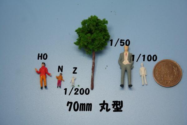 樹木模型サイズ