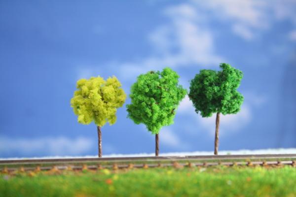 樹木模型鉄道模型