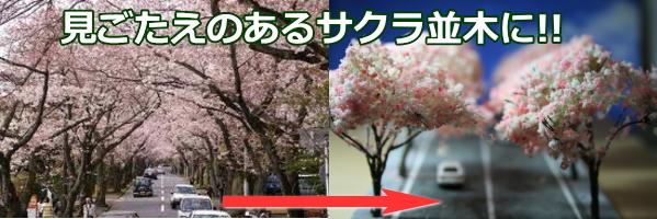 サクラ 模型樹木